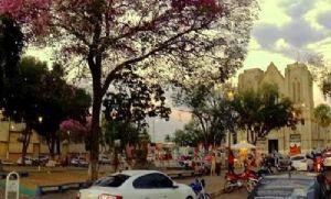 Contratações de seguro levam MPE a ingressar com ação contra filial das