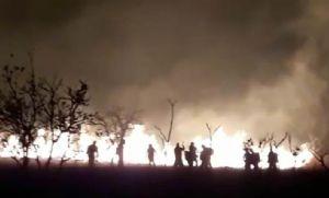 Corpo de Bombeiros prepara soldados para combate aos incêndios florestais (Crédito: Reprodução)