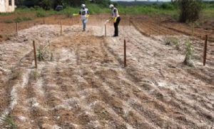 SENAR-MT realiza, em Parceria com a Prefeitura de Confresa, curso de Viveirista em Fruticultura (Crédito: Reprodução)