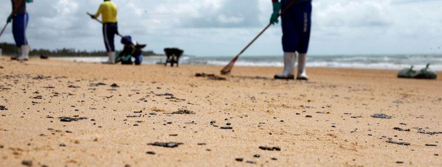 Mais de 525 toneladas de resíduos foram retiradas de praias com óleo (Crédito: Fábio Dantas)