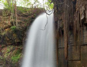 Com entrada gratuita, Salgadeira agrada a todos os públicos e atrai turistas de outros estados (Crédito: Reprodução)