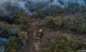 Com base de pesquisa no Pantanal, UFMT envia auxílio para combater incêndio (Crédito: Reprodução)