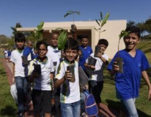 Prefeitura lança meta para plantar 300 mil árvores e fará doação de mudas à população