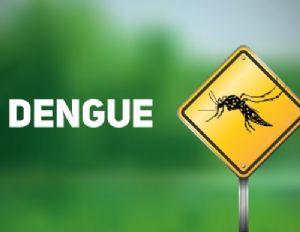 Com 322 mil casos no País, dengue tem alta de 29% em duas semanas (Crédito: Reprodução)