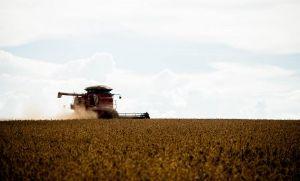 Campo Verde é o 4º maior produtor agrícola de Mato Grosso (Crédito: Reprodução)