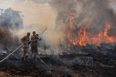MT vai receber R$ 23,8 milhões para combater queimadas e desmatamento