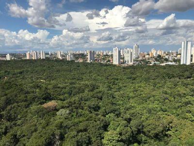 Parques urbanos reabrem nesta quarta-feira (05) com uso obrigatório de máscara