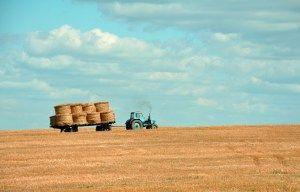WND lança rede de IOT para agronegócio