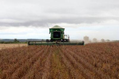 Mato Grosso produziu 9% de toda soja no mundo no ano passado