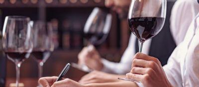 As tendências dos vinhos sul-americanos