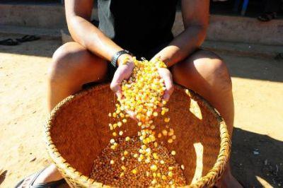 Brasil ocupa 38ª. posição em índice de segurança alimentar