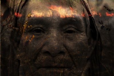 Artistas lançam exposição online sobre as queimadas em Mato Grosso
