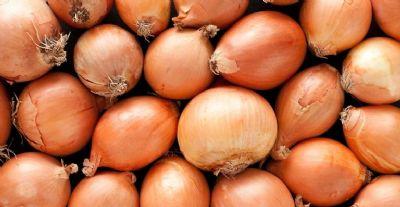 Saiba o jeito certo de escolher e armazenar cebolas