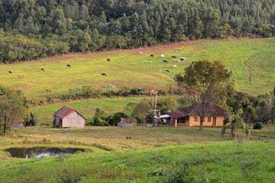 Censo Agropecuário visita mais de 2 milhões de propriedades