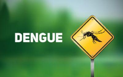Com 322 mil casos no País, dengue tem alta de 29% em duas semanas