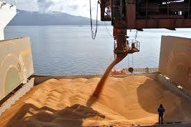 Brasil: Exportações de Soja crescem 29% no acumulado do ano